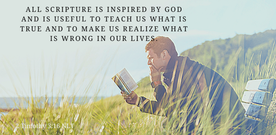 Thankful for the Role of Scripture: Day 29